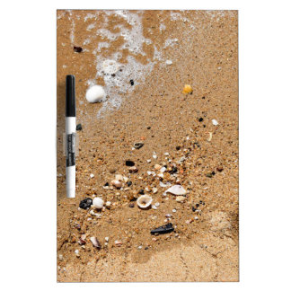 SHELLS ON BEACH QUEENSLAND AUSTRALIA Dry-Erase WHITEBOARD