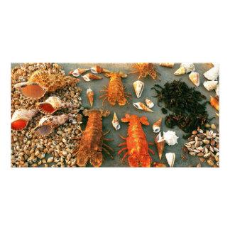 Shells Photo Card