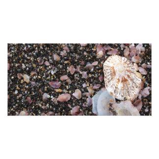 Shells Custom Photo Card