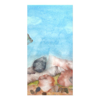 Shells Under The Sea. Picture Card