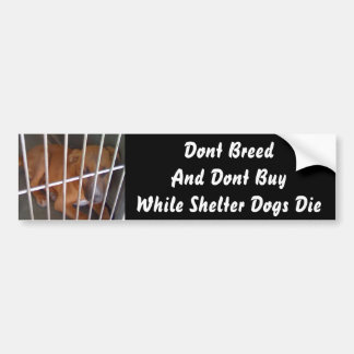 Shelter Dogs Die Bumper Sticker