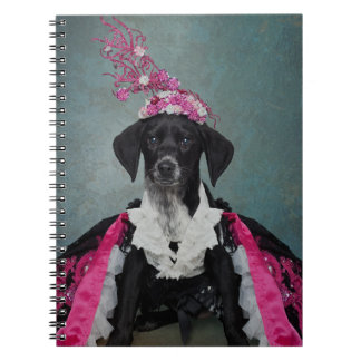 Shelter Pets Project - Pepper Notebooks