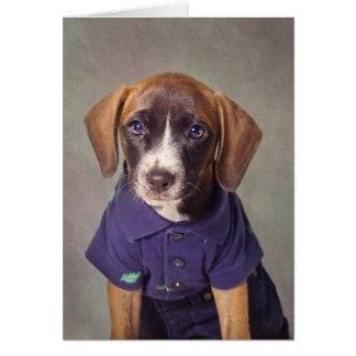 Shelter Pets Project - Rhett Card