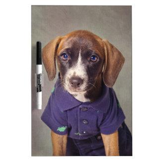 Shelter Pets Project - Rhett Dry Erase Board