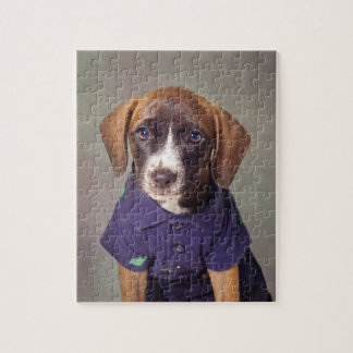 Shelter Pets Project - Rhett Puzzle