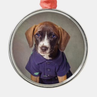 Shelter Pets Project - Rhett Silver-Colored Round Ornament