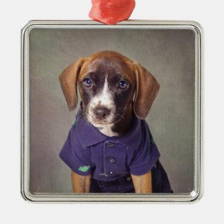 Shelter Pets Project - Rhett Silver-Colored Square Ornament