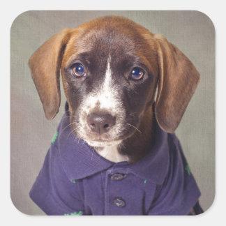 Shelter Pets Project - Rhett Square Sticker