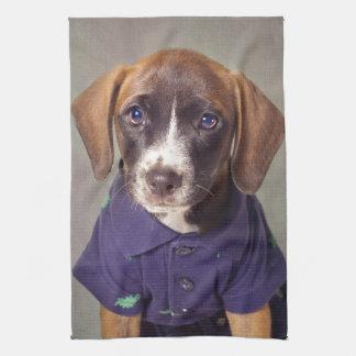 Shelter Pets Project - Rhett Towel