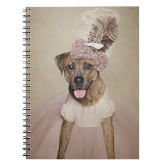 Shelter Pets Project - Tigger Note Book
