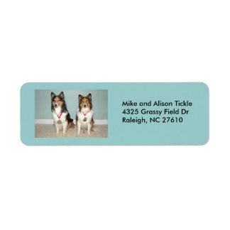 Sheltie Champs Custom Return Address Label