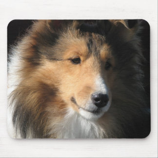 Sheltie face mouse pad