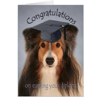 Sheltie Graduation Card