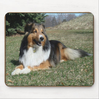 sheltie_mpad4 mouse pad