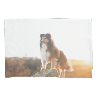 Sheltie on Cliff protecting heard during sunset Pillowcase