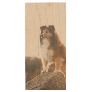 Sheltie on Cliff protecting heard during sunset Wood USB Flash Drive