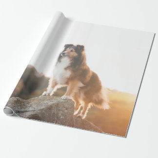 Sheltie on Cliff protecting heard during sunset Wrapping Paper