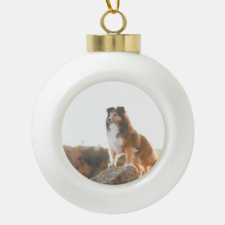 Sheltie on Cliff protectng heard during sunset Ceramic Ball Christmas Ornament