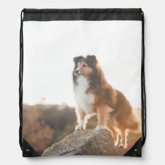 Sheltie on Cliff protectng heard during sunset Drawstring Bag