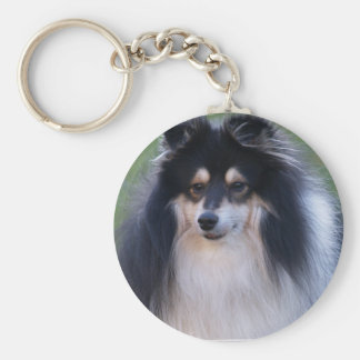 Sheltie Photo Keychain