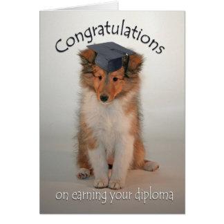 Sheltie Puppy Graduation Card