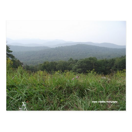 shenandoah valley virginia postcard