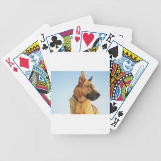 shepherd bicycle playing cards