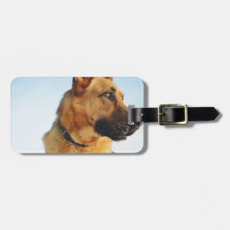 shepherd luggage tag