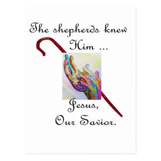 Shepherds Knew Him Postcard