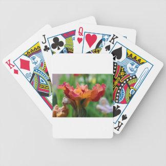 Sherbet Hustle Poker Deck