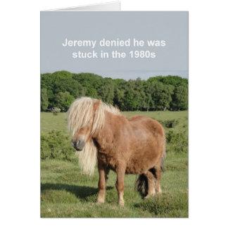 Shetland pony card