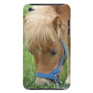 Shetland Pony  iTouch Case