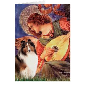 Shetland Sheepdog 7 - Mandolin Angel Card