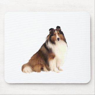 Shetland Sheepdog (A) - Sable and white Mouse Pad