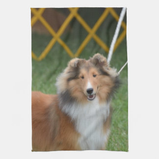 Shetland Sheepdog Kitchen Towel