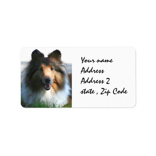 Shetland Sheepdog Label