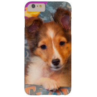 Shetland Sheepdog puppy in a hat box Barely There iPhone 6 Plus Case