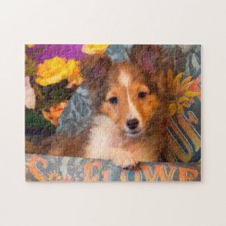 Shetland Sheepdog puppy in a hat box Jigsaw Puzzle