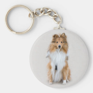 Shetland Sheepdog, sheltie cute dog photo portrait Keychain