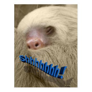 shhhhhh sleepy sloth postcard
