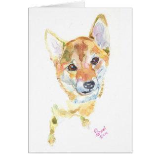 Shiba Enu Card