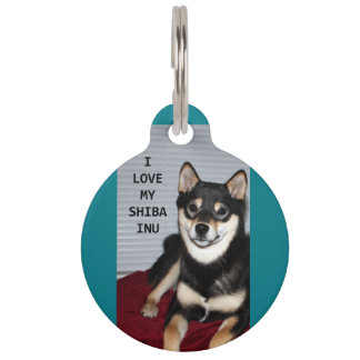 shiba full black and tan love w pic pet ID tag