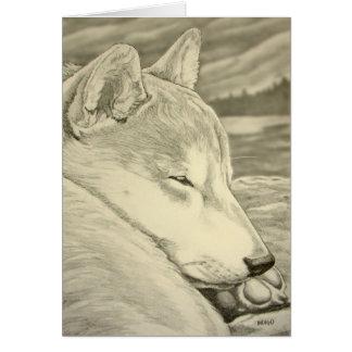 Shiba Inu Dog Art Cards Blank Shiba Inu Cards