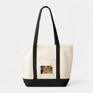 Shiba Inu Dog Canvas Tote Bag