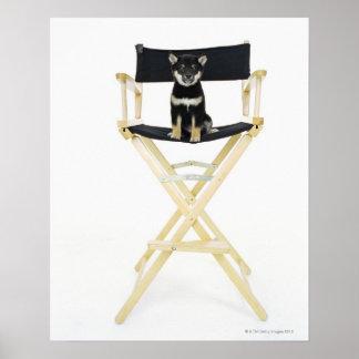 Shiba Inu dog on director's chair Poster