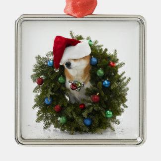 Shiba Inu dog wearing Santa hat sitting in Metal Ornament