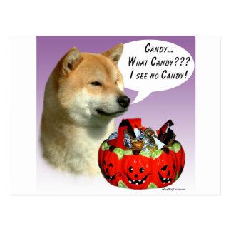 Shiba Inu Halloween Candy Postcard