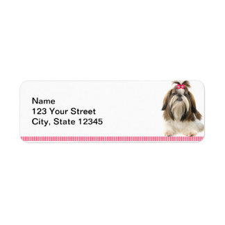Shih Tsu with Pink Bow on Pink Diamond border