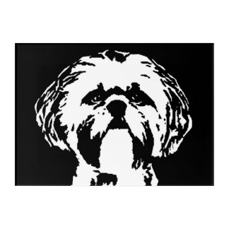 Shih Tzu Black & White Acrylic Wall Art