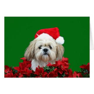 Shih Tzu  Christmas Card